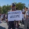 Resources for Local Campaigns re Support for Refugee & Asylum Seeker Students & Academics